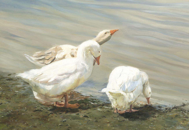 0.9-Whitbury-Geese