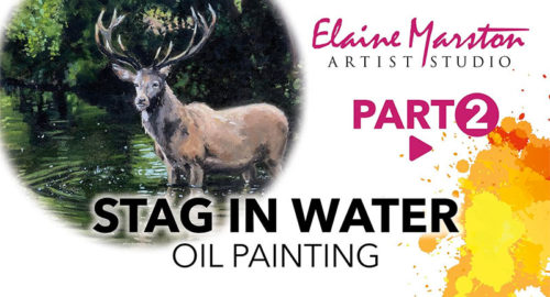 stag-in-water-part2
